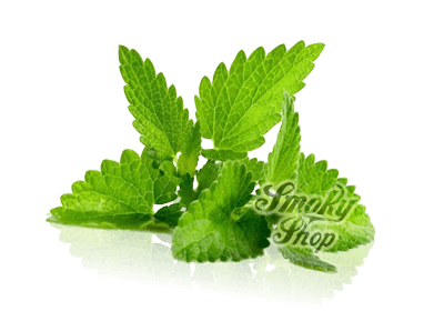 smokyshopмята e1455663224151