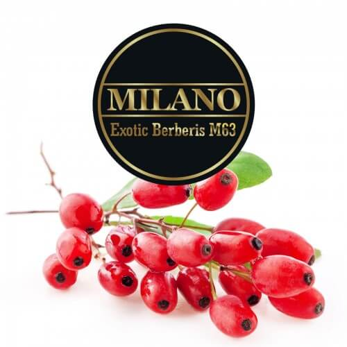 tabak milano exotic berberis m63
