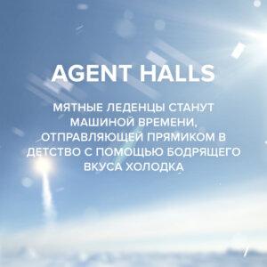 Чайная смесь 4-20 Agent Halls