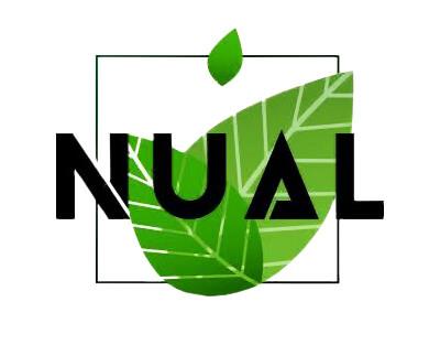 Табак Nual (нуал)