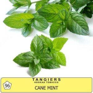 Табак Tangiers Noir Cane Mint 96 - перечная мята